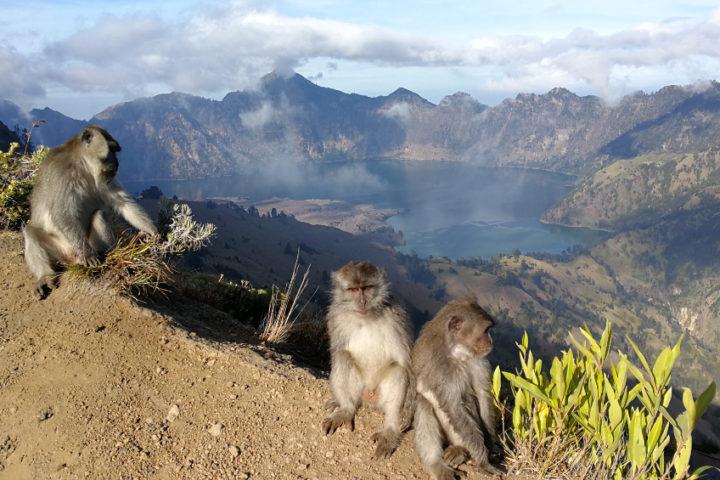 Lombok, Indonézia