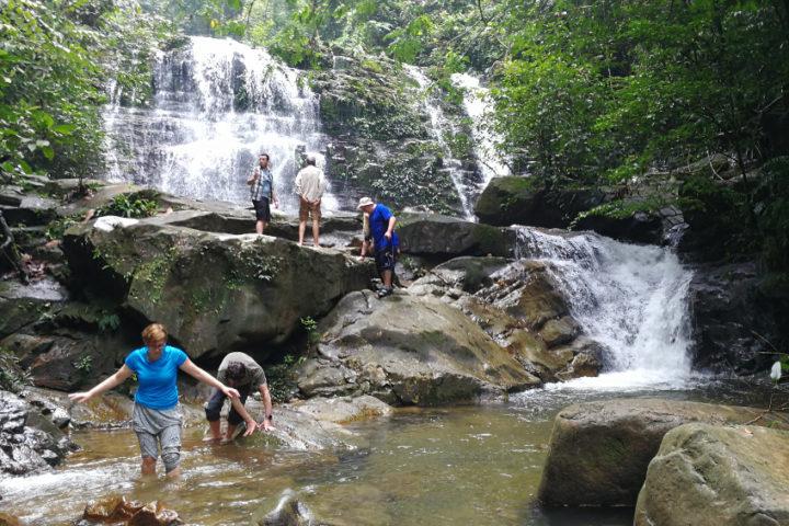 Borneó, Malajzia